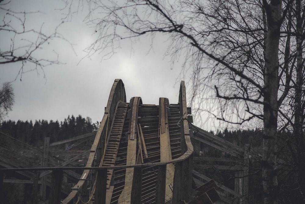 brown wooden foot bridge