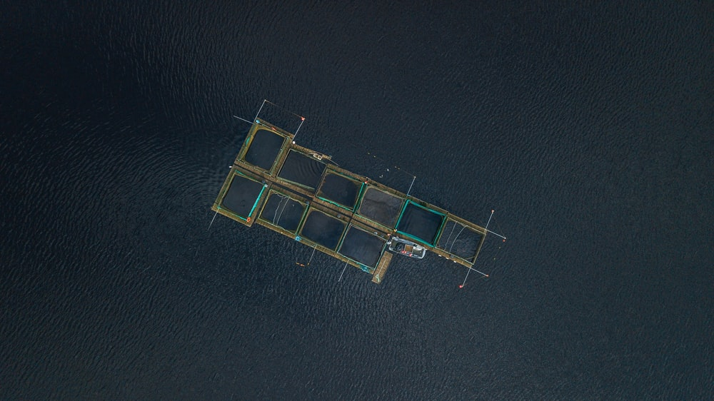 aerial photography of fish pen at daytime