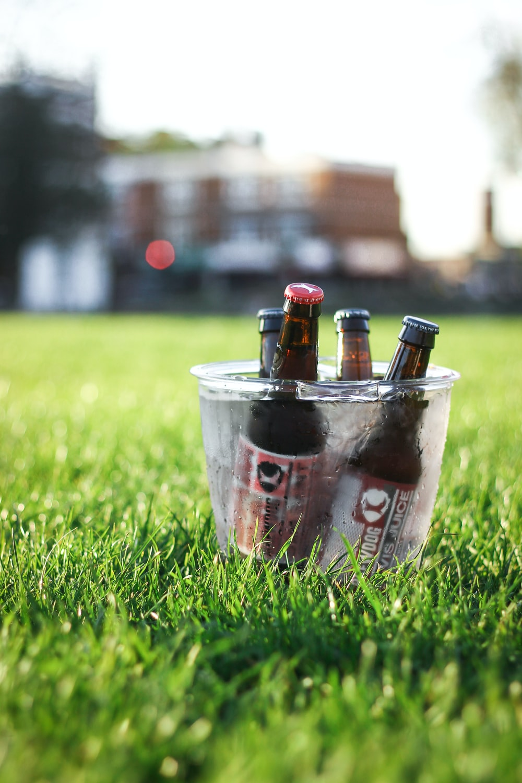 shallow focus photography of beer bottles in bucket