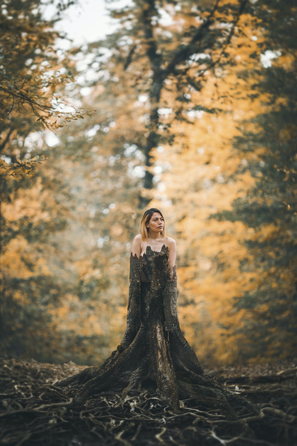 woman standing behind tree stump at forest