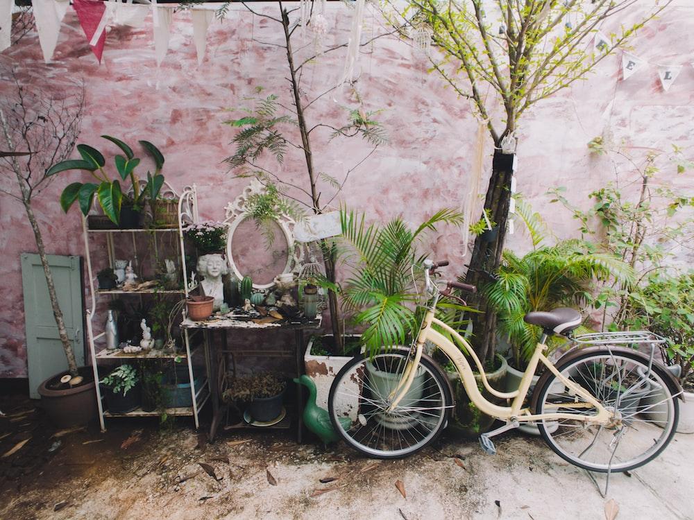 beige beach cruiser bike parked beside plants
