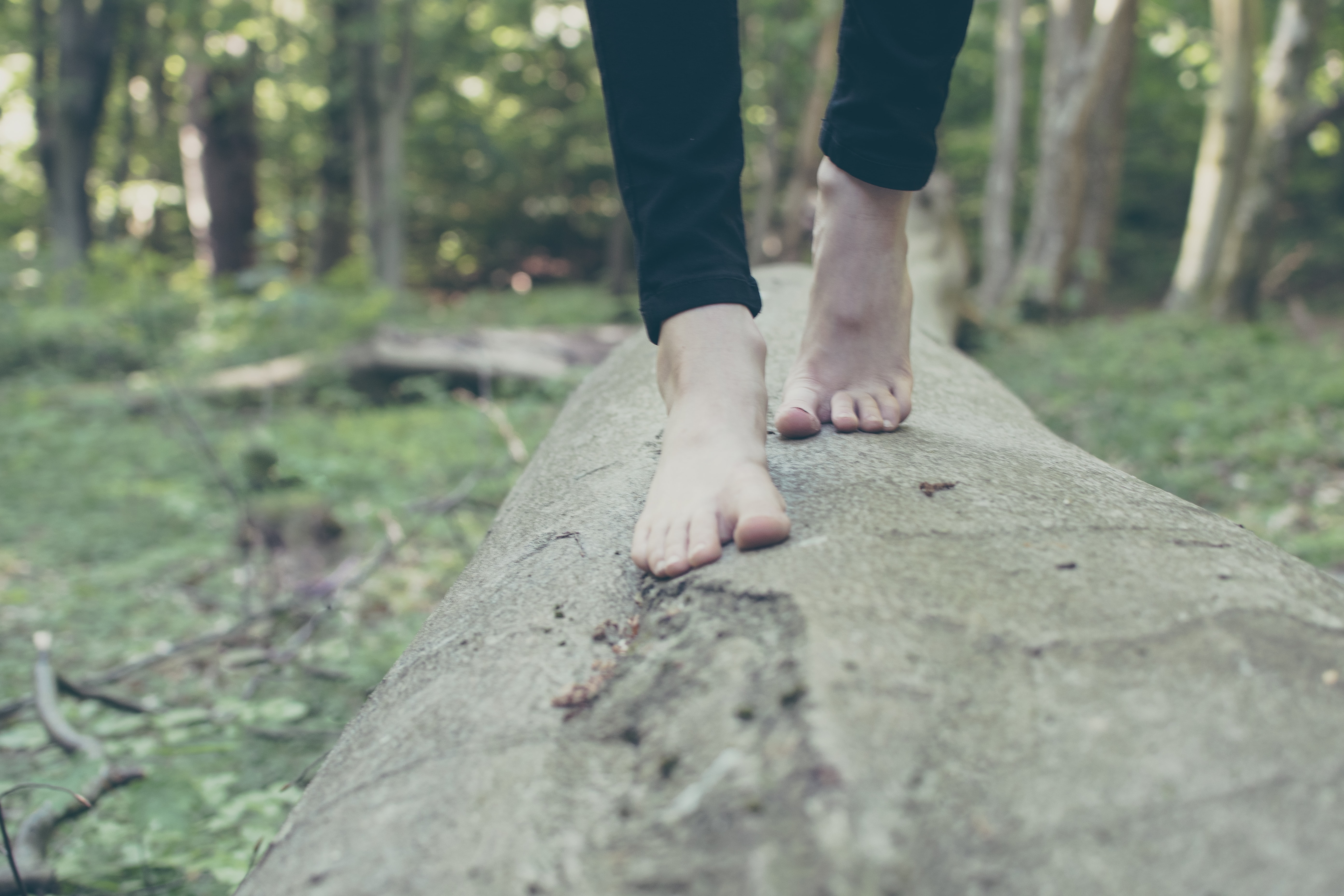 person walking on branch