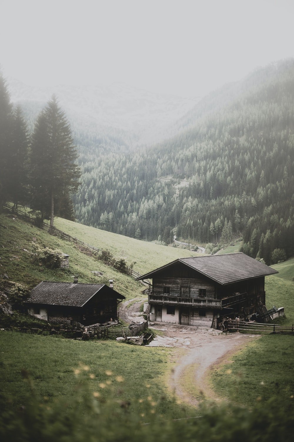 two brown wooden houses near mountain and trees at daytime