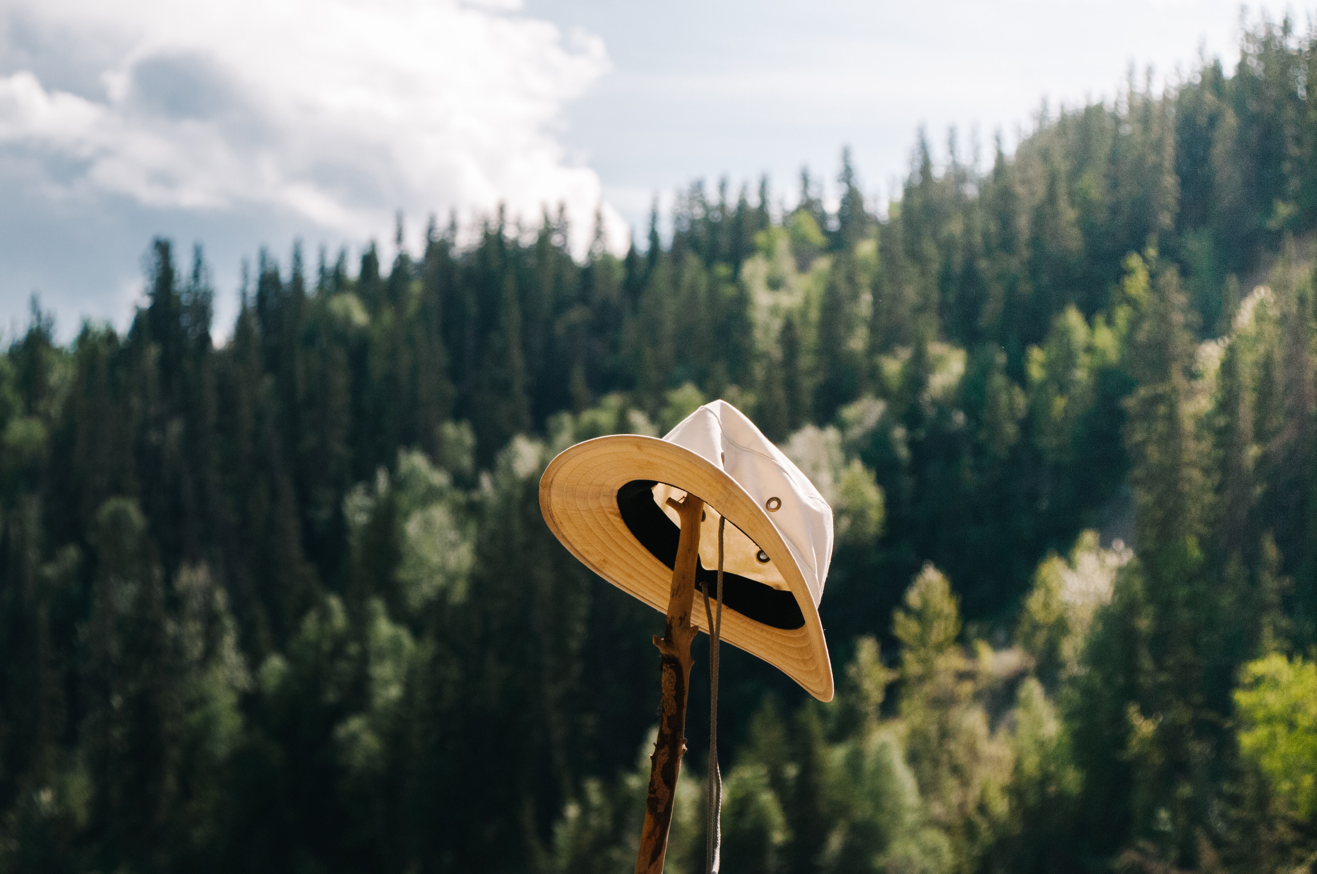brown hat on top of brown wooden stick at daytime