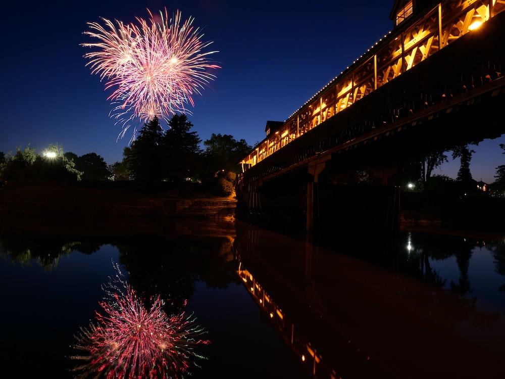 fireworks over trees near lighted bridge