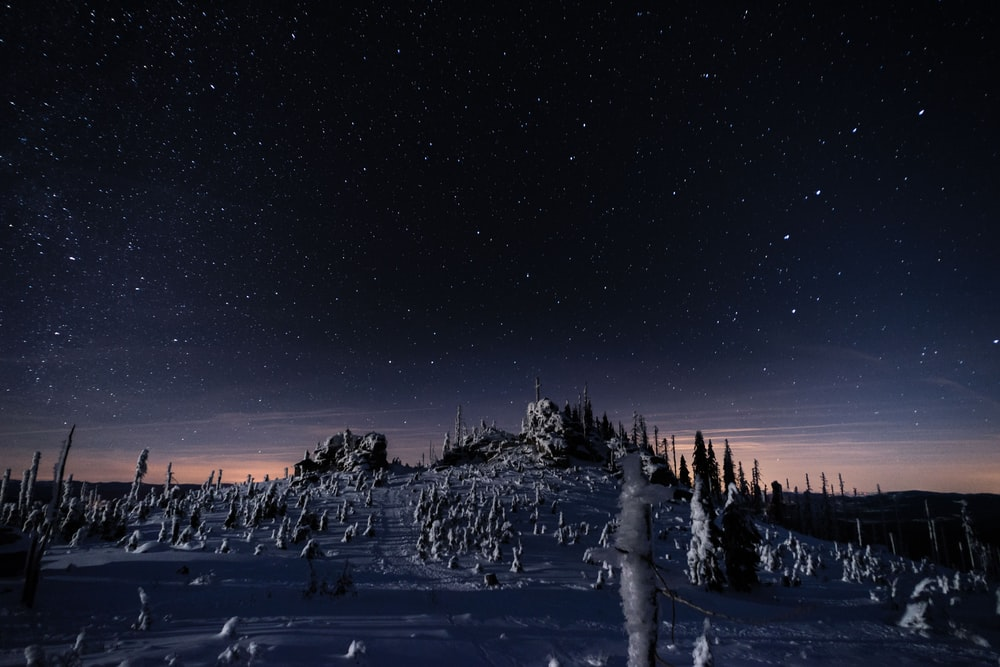 photo of castle under starry night