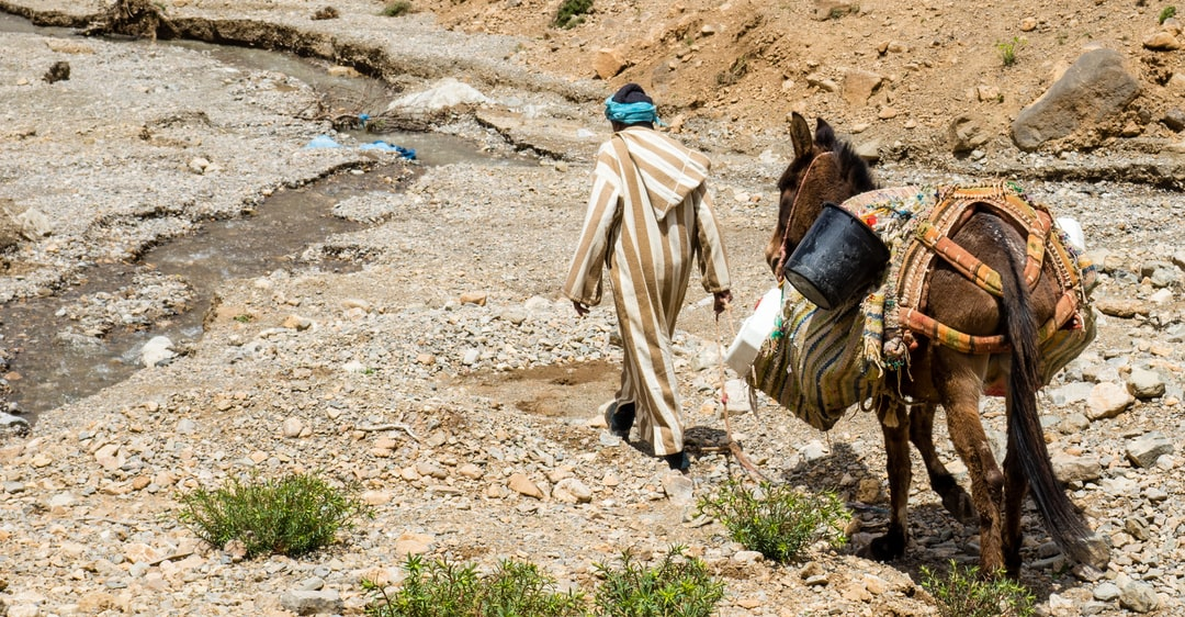 This man is getting water at some pure sources in the Atlas for his village. With his donkey he goes upstream this tiny river and fills the jerrycans with this water. Then he walks back again to his tiny village.