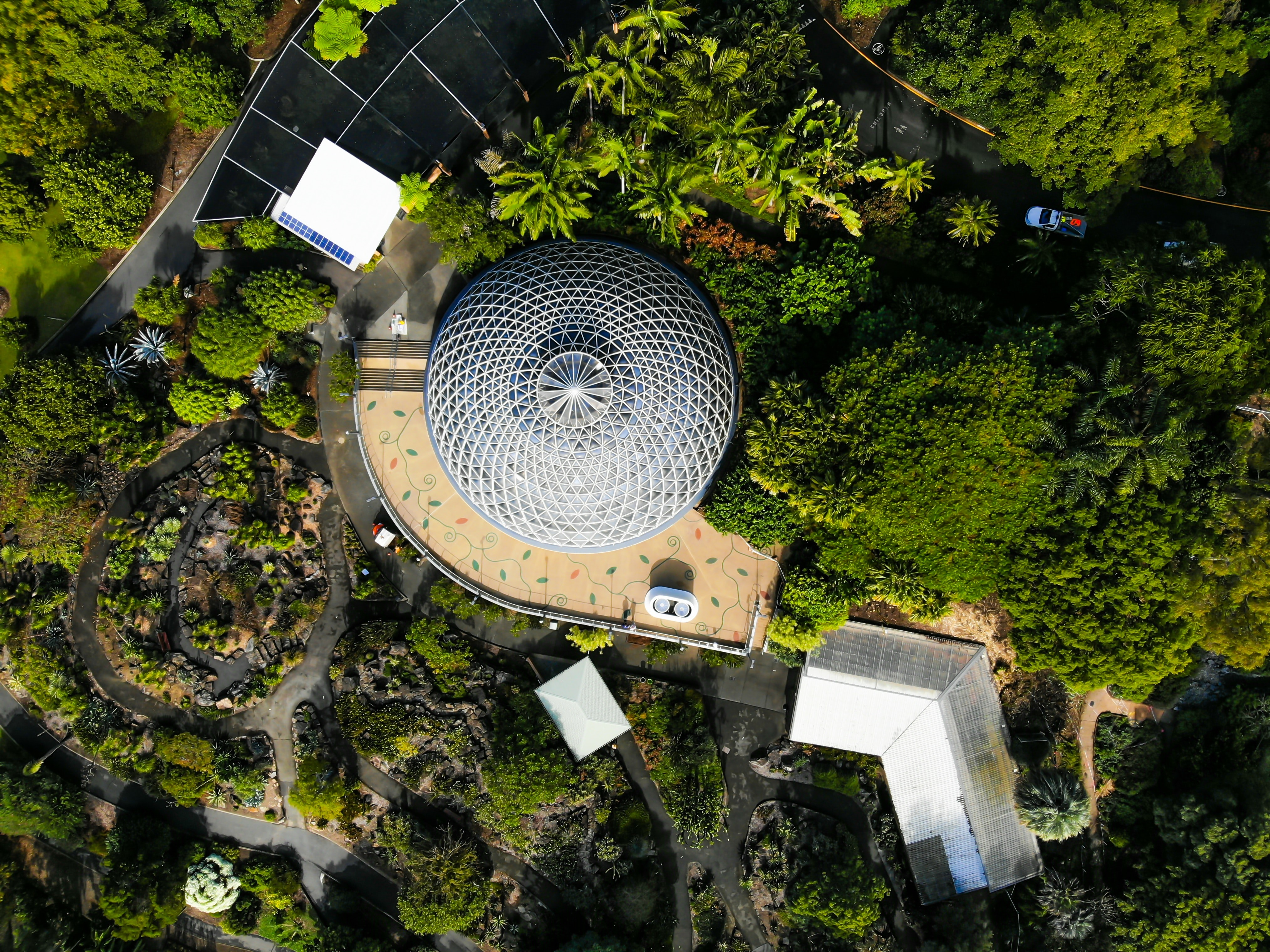 areal photography of round gray building surrounded by trees