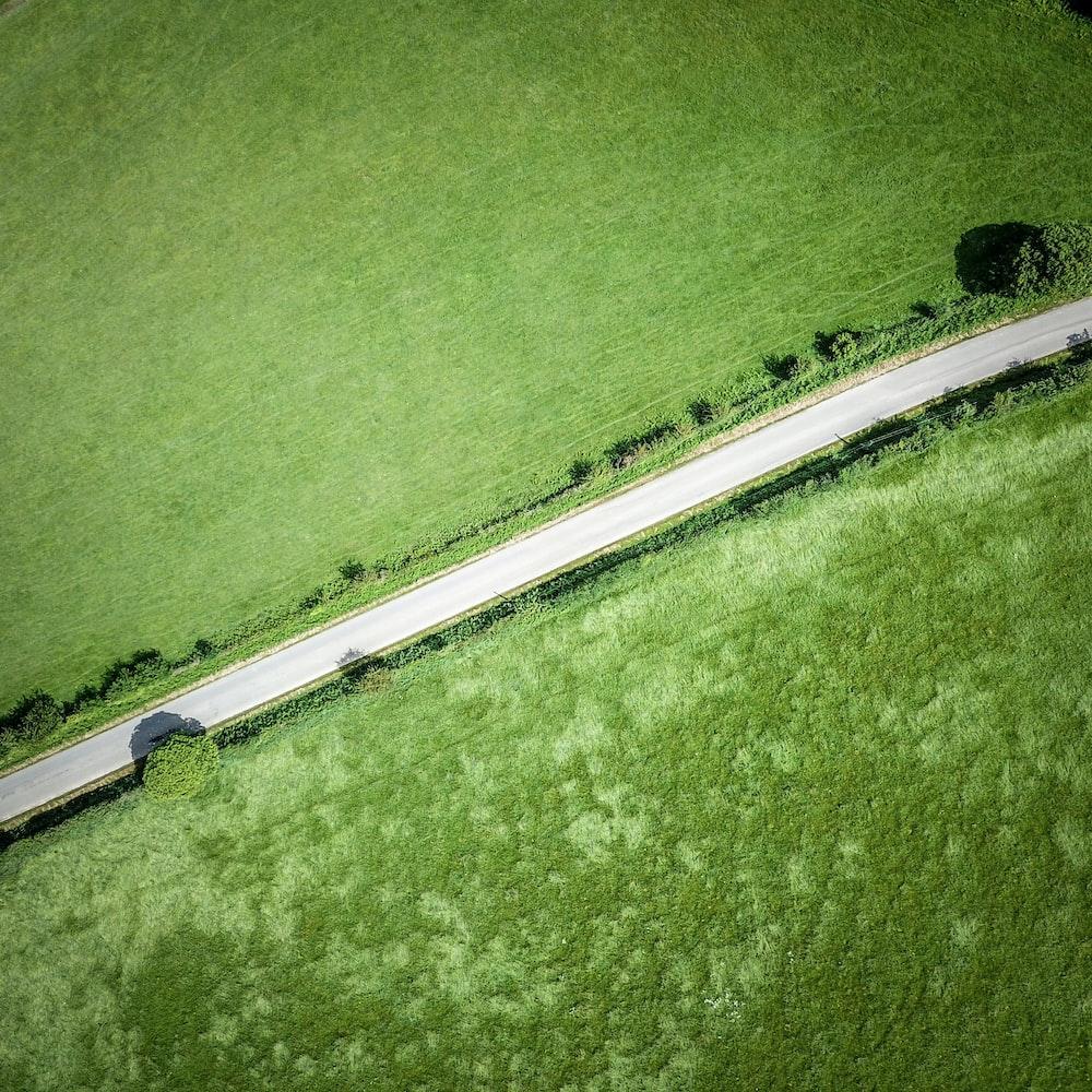bird's-eye view of road between grass field