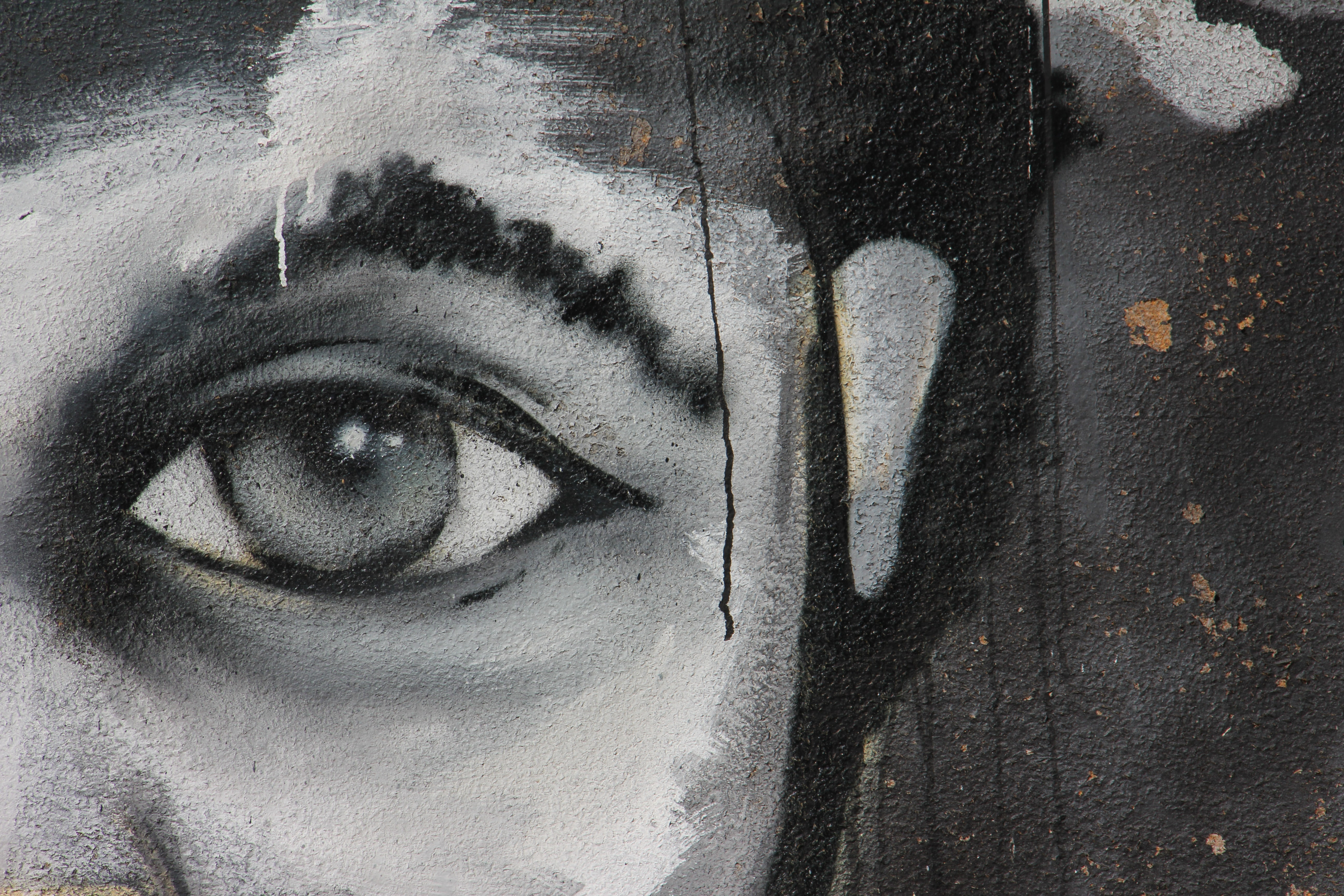 canvas painting of person eye