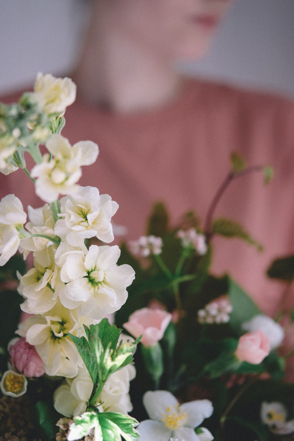 shallow focus photography of white flowers