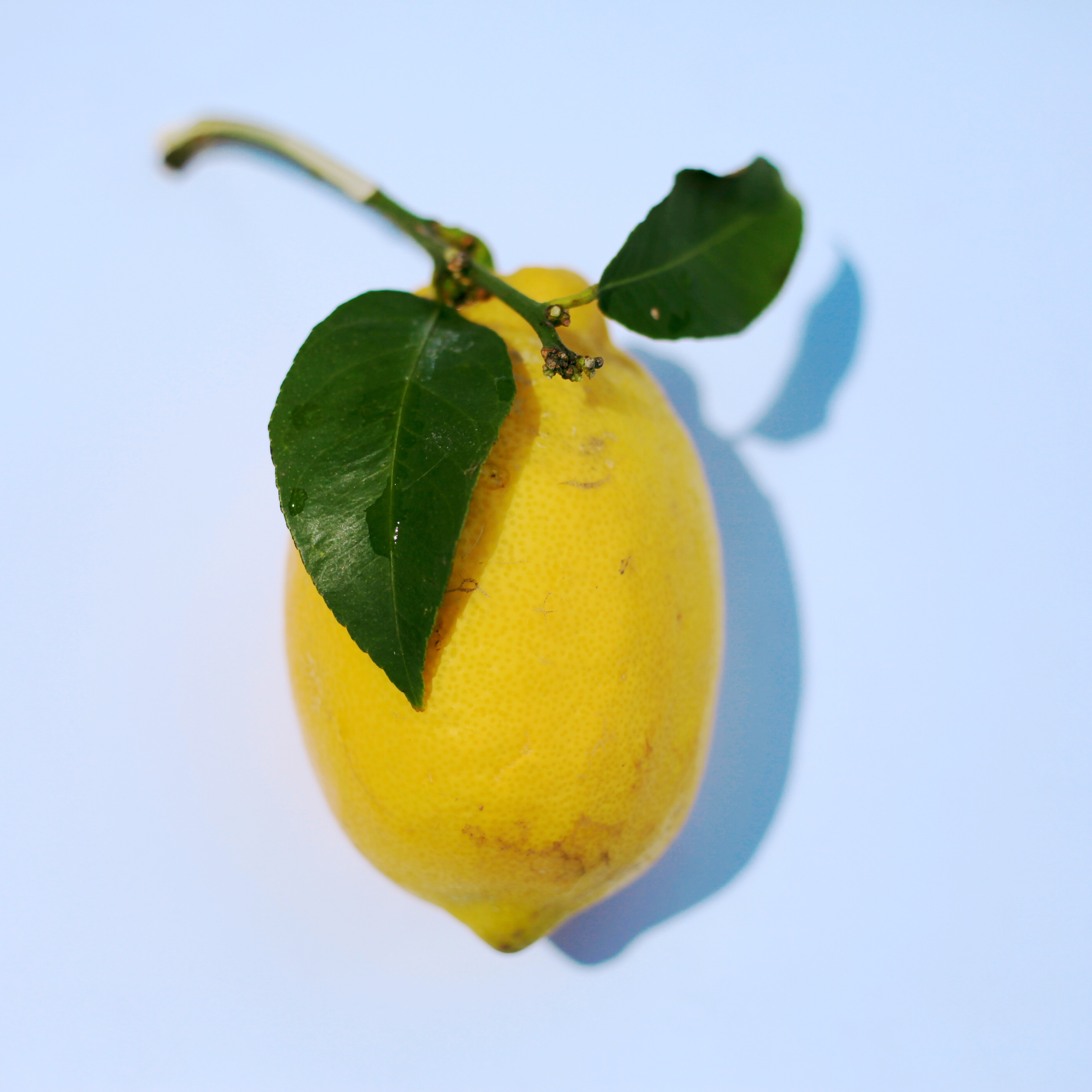 yellow citrus fruit