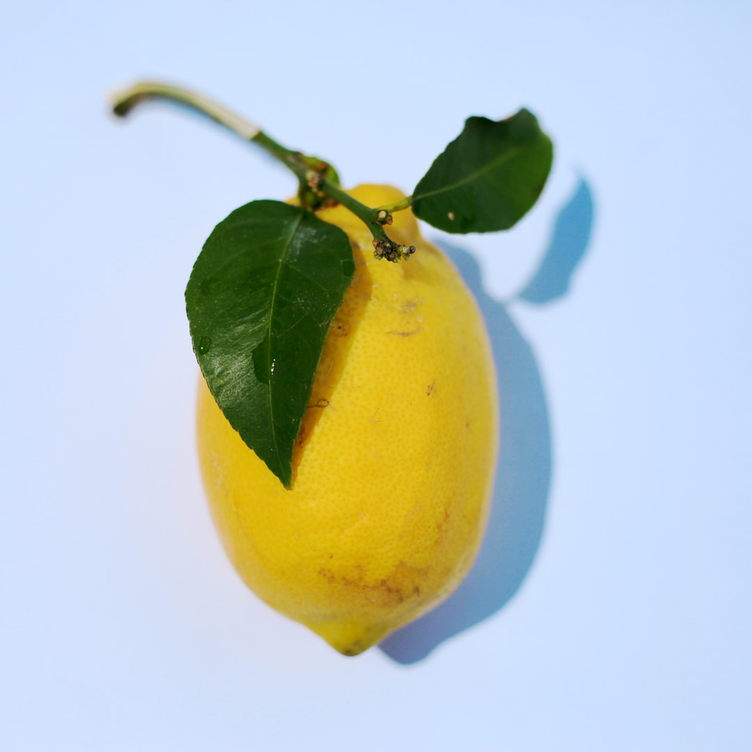 A man from California comes to hunt with my dad in Colorado. He brought us a tub full of grapefruit and lemons. This one was the perfect looking lemon to me.