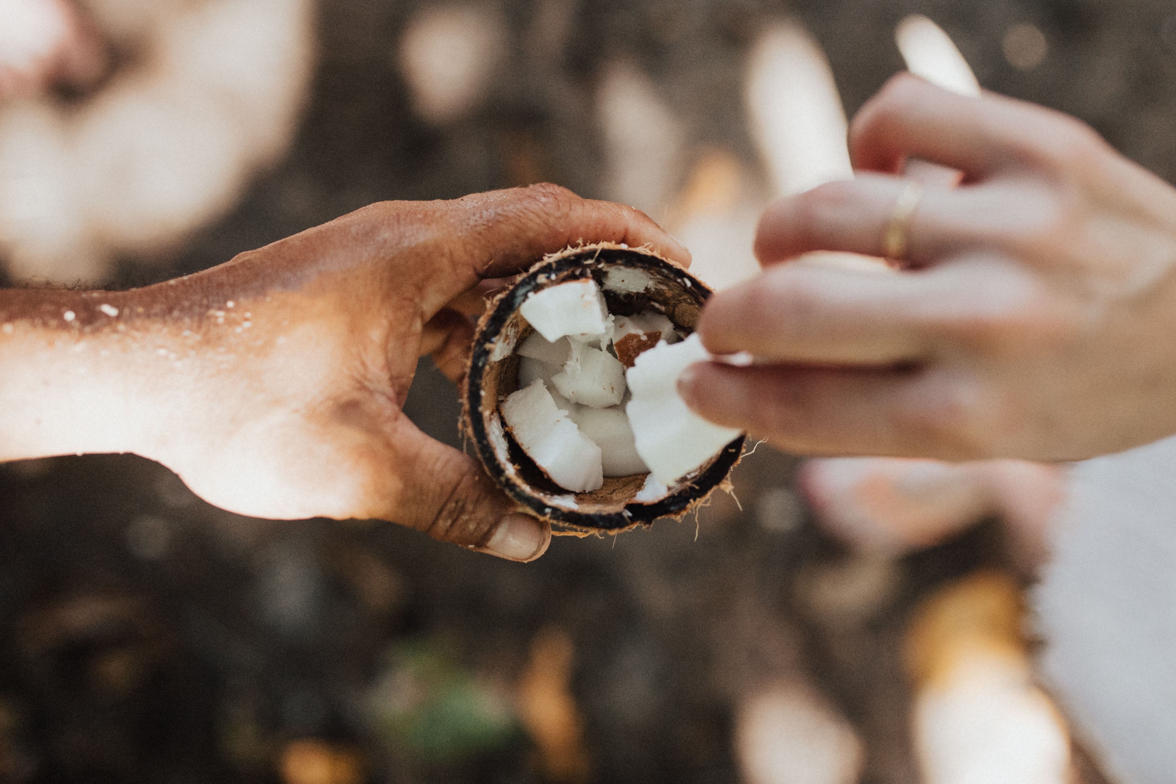 top-view photo of person scraping coconut
