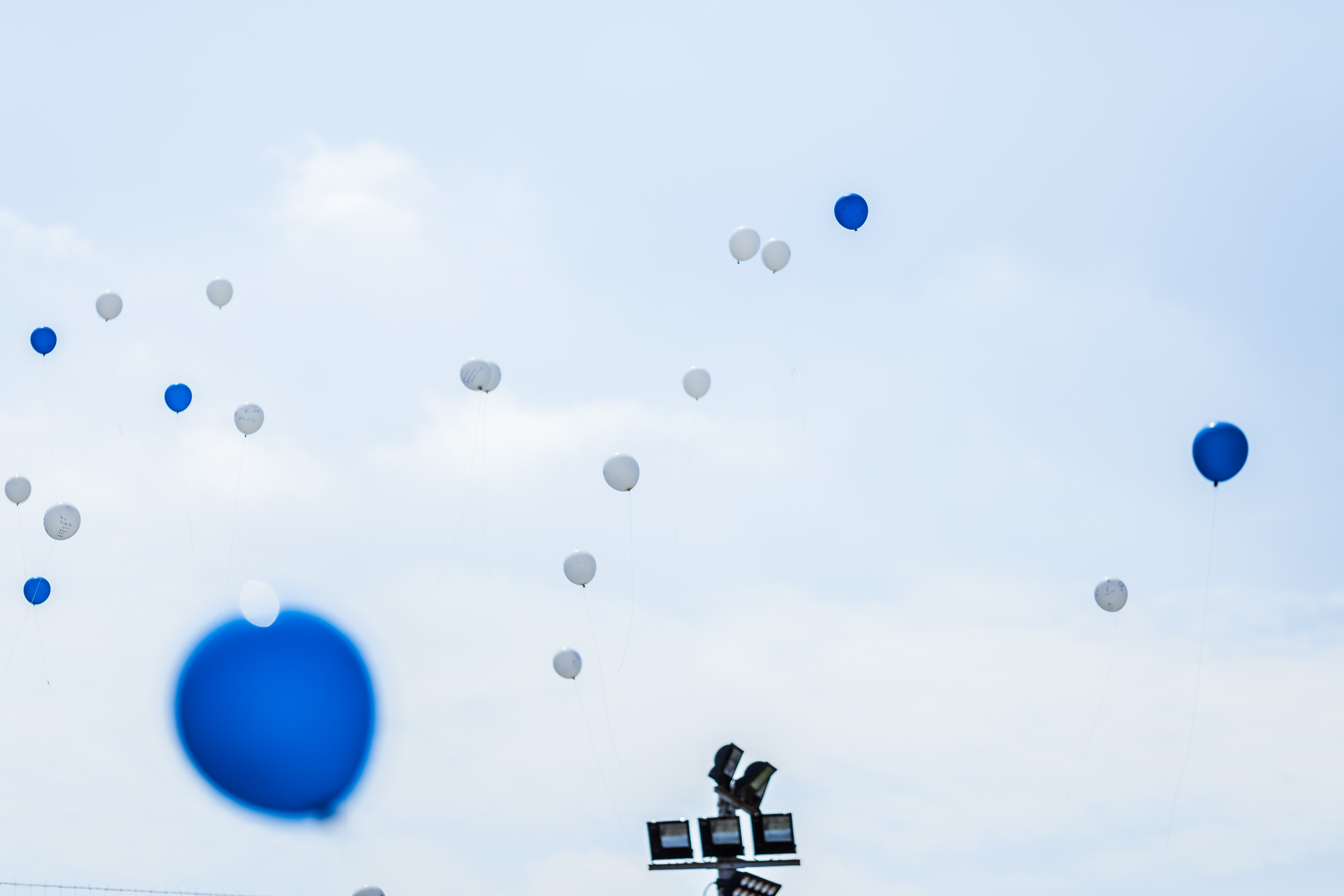 white and blue balloons on sky