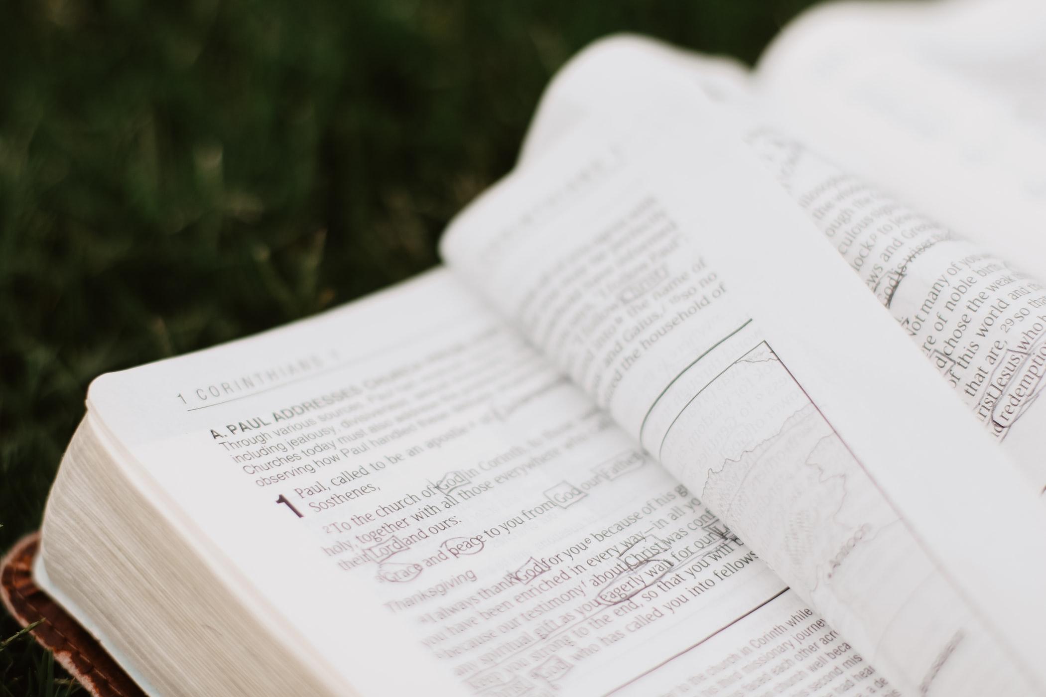 高校生までで学習する英単語数は約3000語