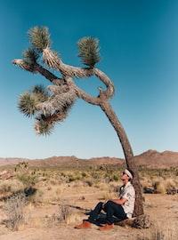 man resting on tree