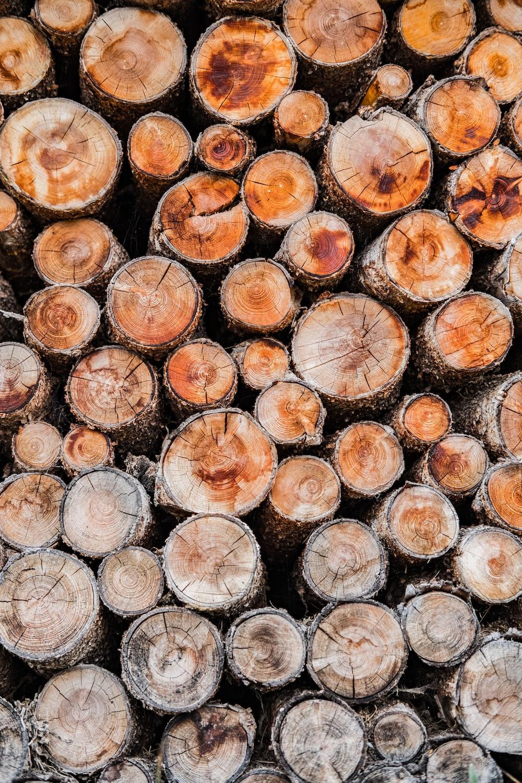 pile of of brown wood logs