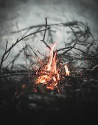 Fire  poem stories
