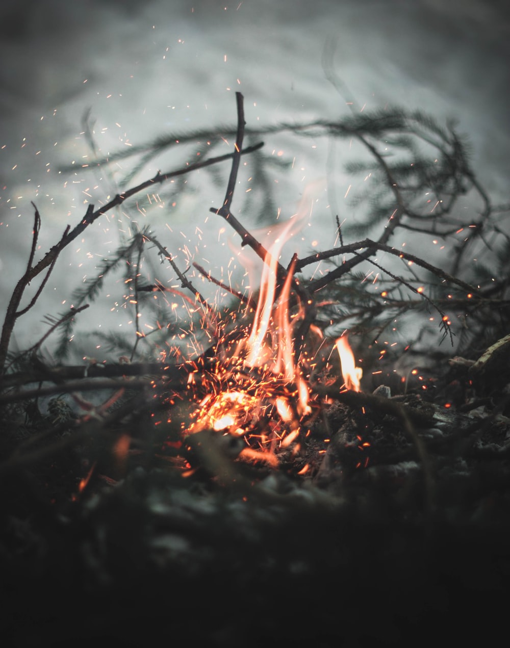 bonfire selective focus photography