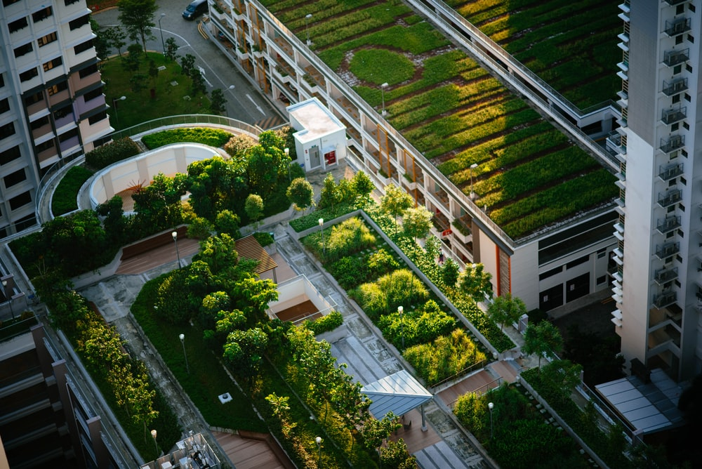 top view of building with trees