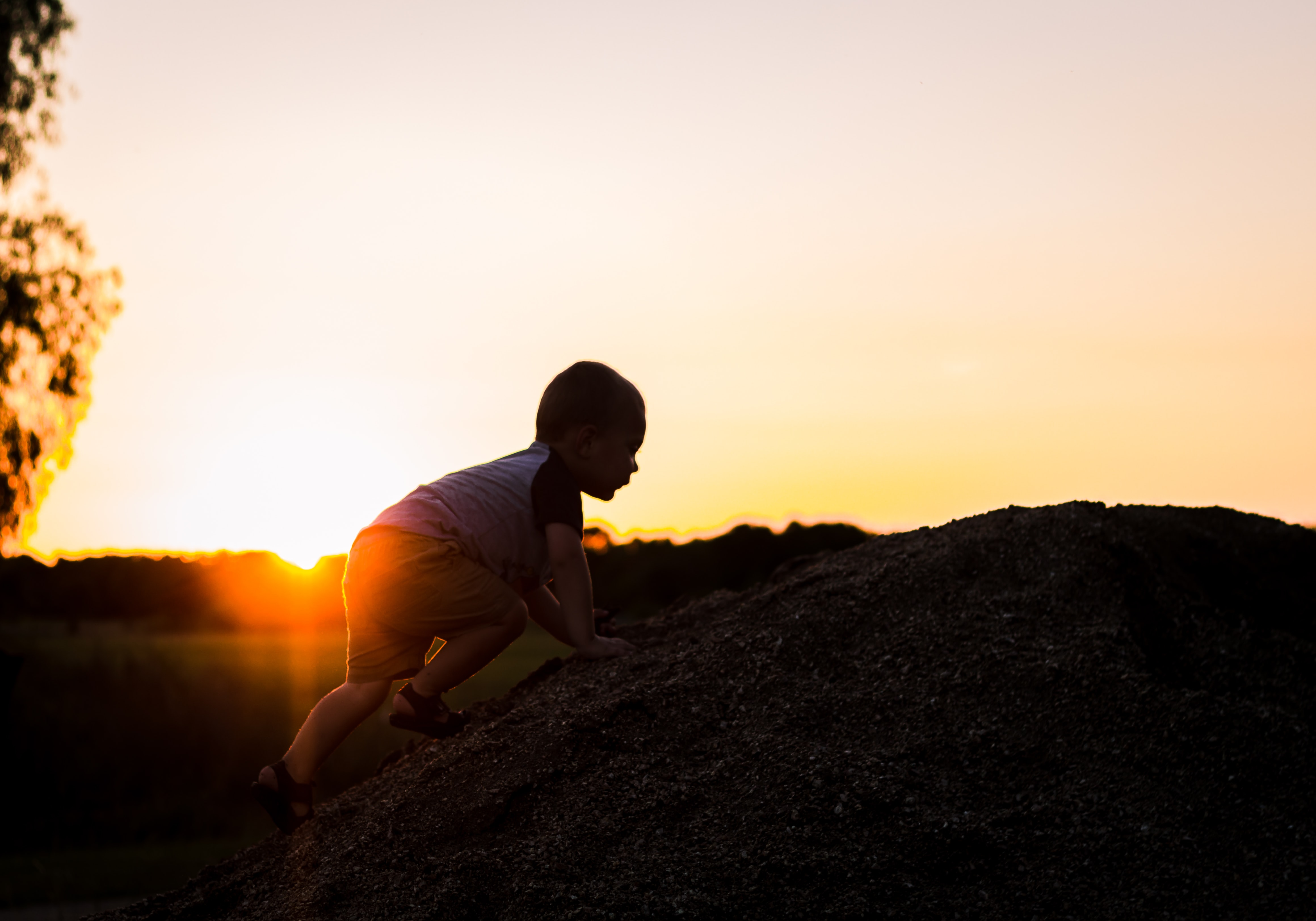 silhouette photography of child climbing on rock