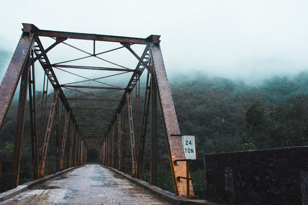 high bridge near green forest covered with fog