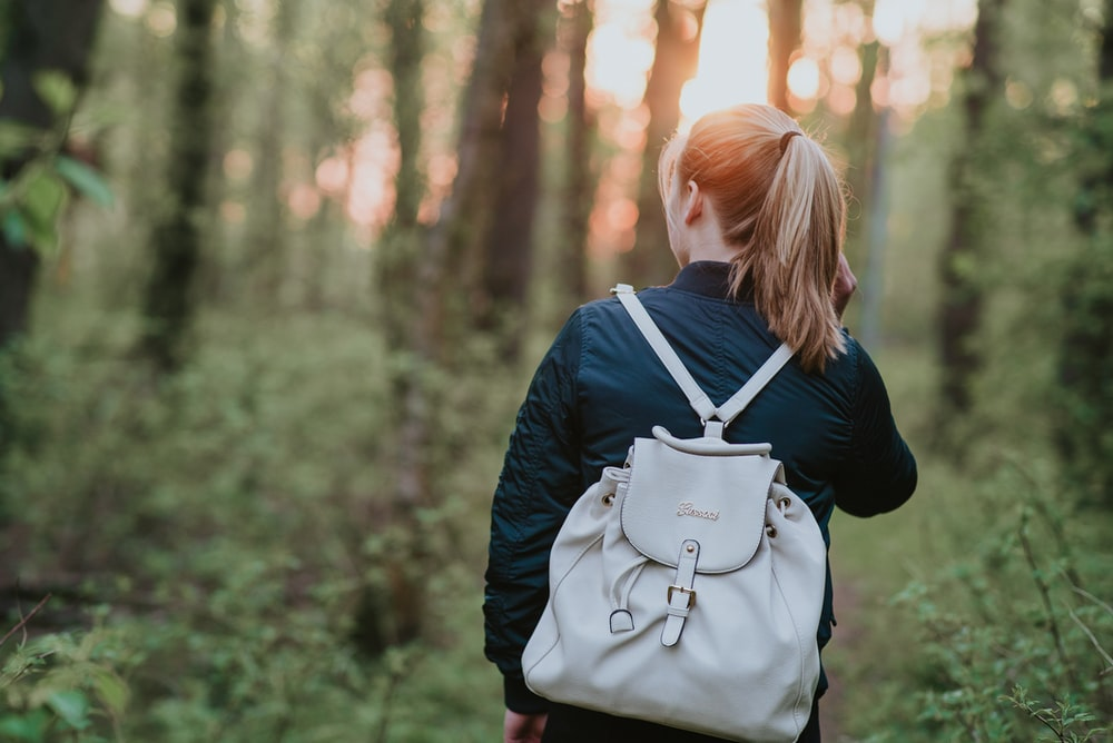 woman carrying white bucket back walking on forest surrounded by trees at daytime