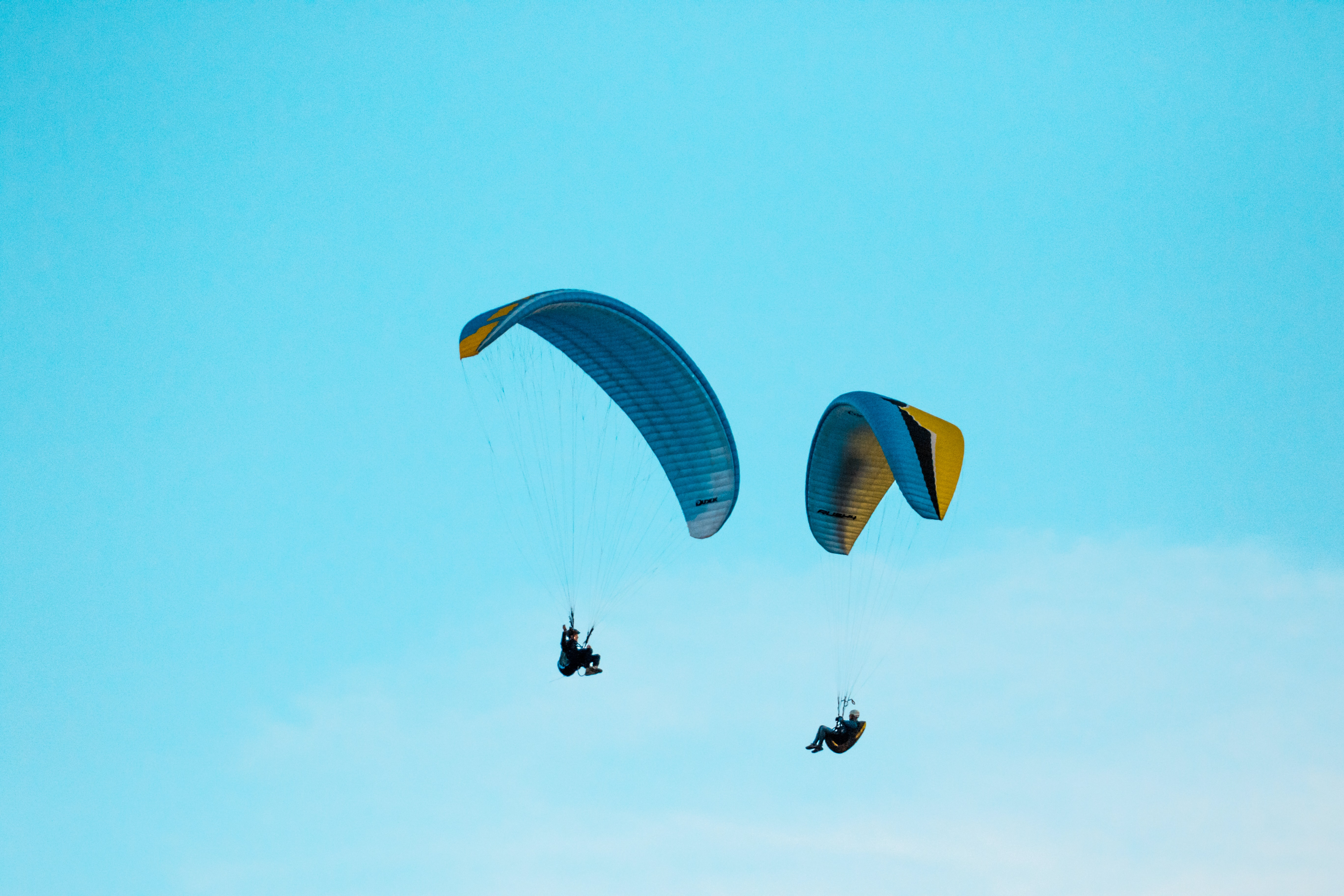 two person parachuting during clear blue sky