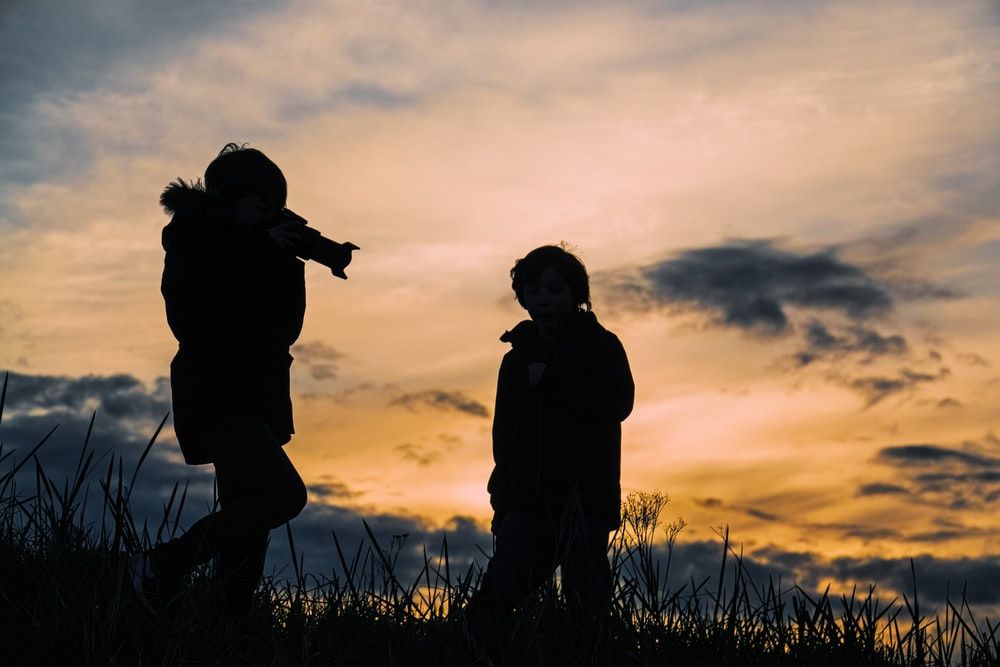 silhouette photo of two person taking a photo at grass fields