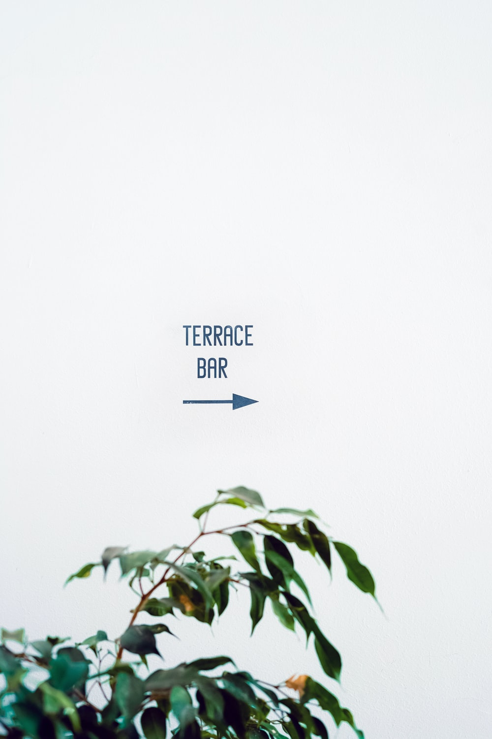 Terrace Bar text