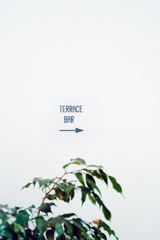 Terrace Bar text