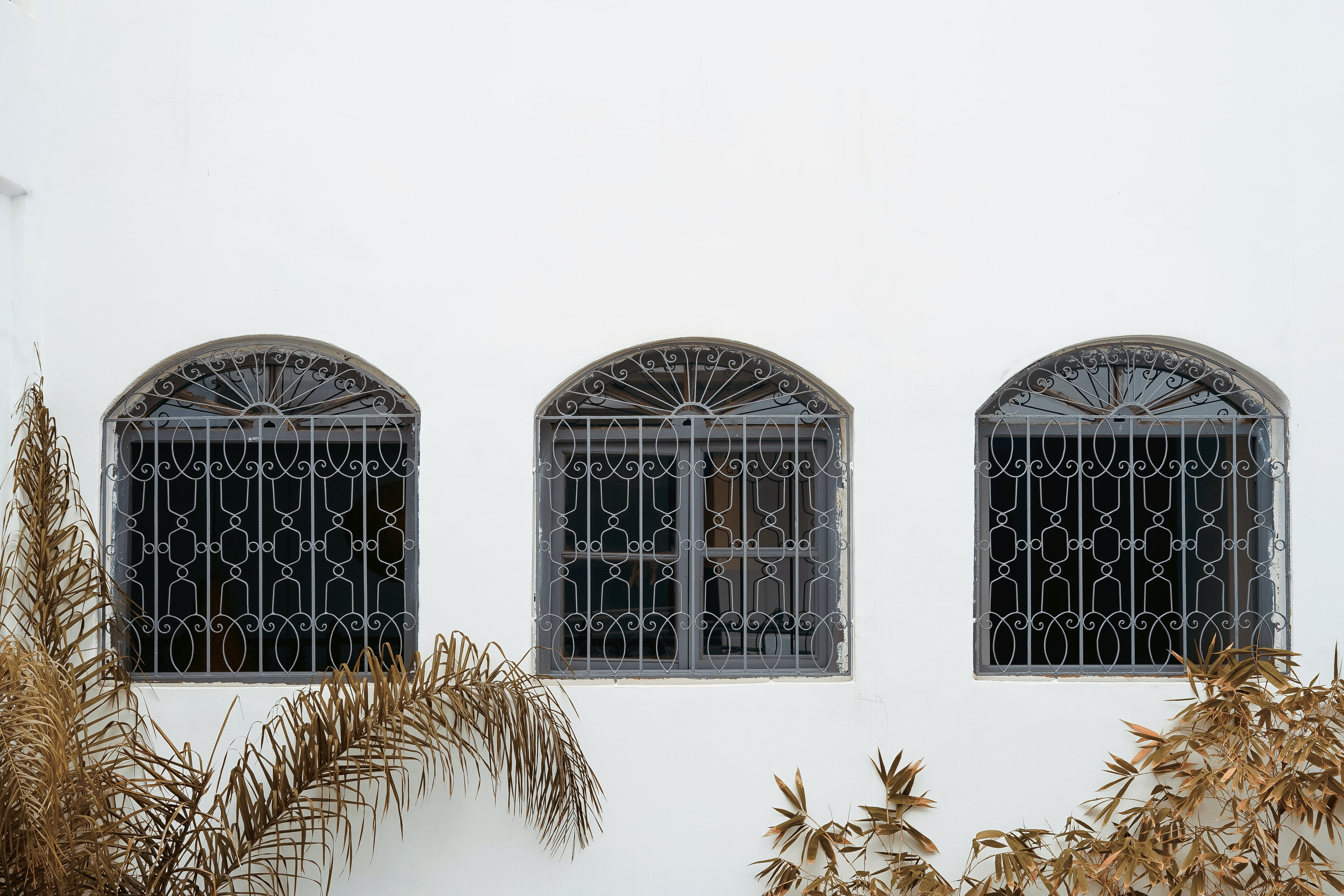 white painted building
