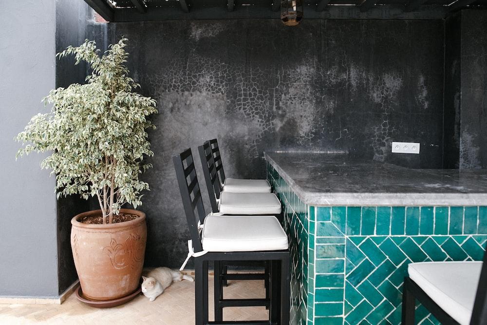 three black-and-white bar stools ahead