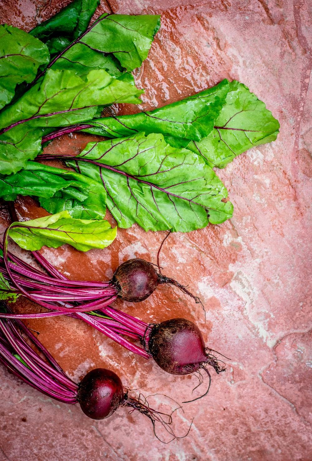 focus photo of green vegetable