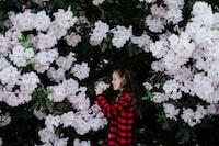 girl holding white flower covered with flower