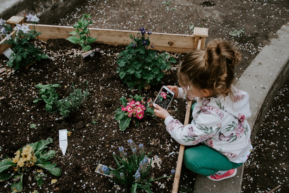 Child Gardening Pictures | Download Free Images on Unsplash