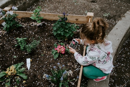 Foolproof Methods for Success With Raised Bed Gardening