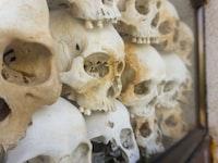 genocidal