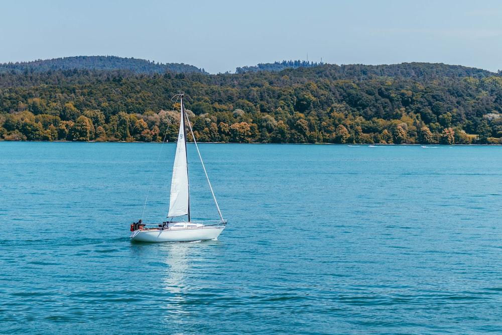 white sail boat on ocean