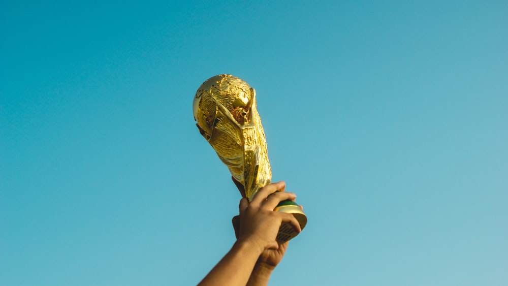 person holding gold trophy