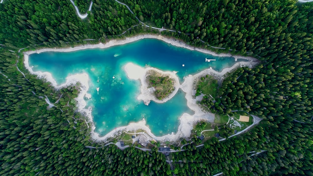 aerial photography of body of water surrounded by trees at daytime