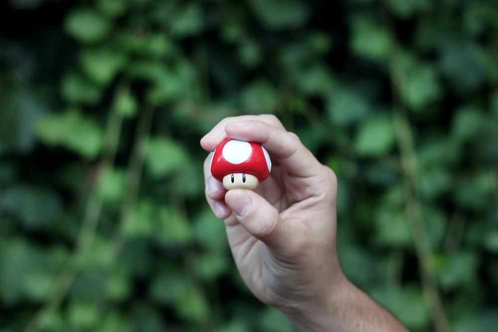 person holding Super Mushroom