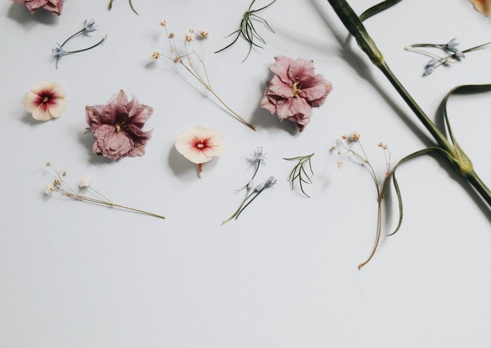 floral artwork on surface
