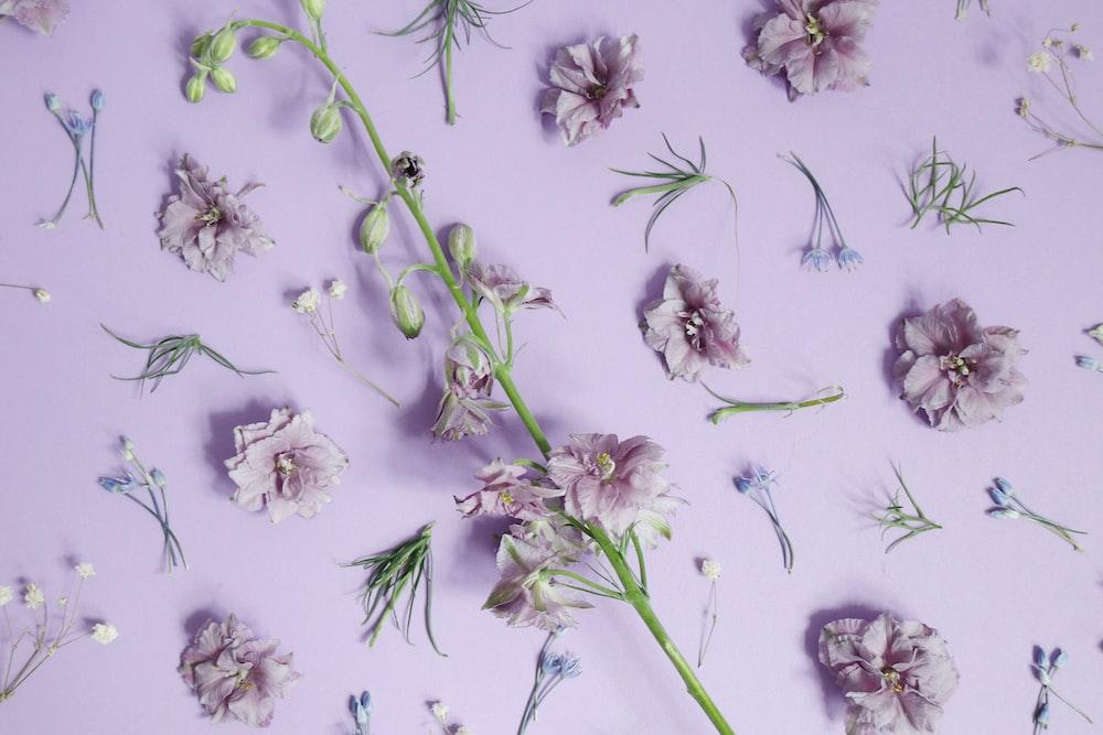 purple petaled flower decor