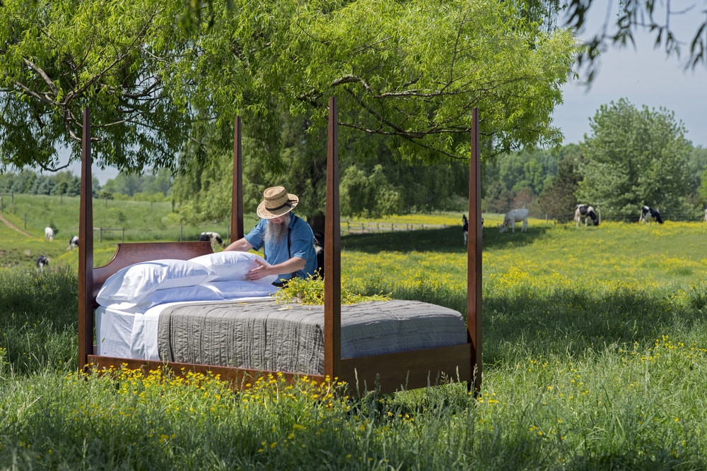 brown wooden canopy bed on green grass during daytime