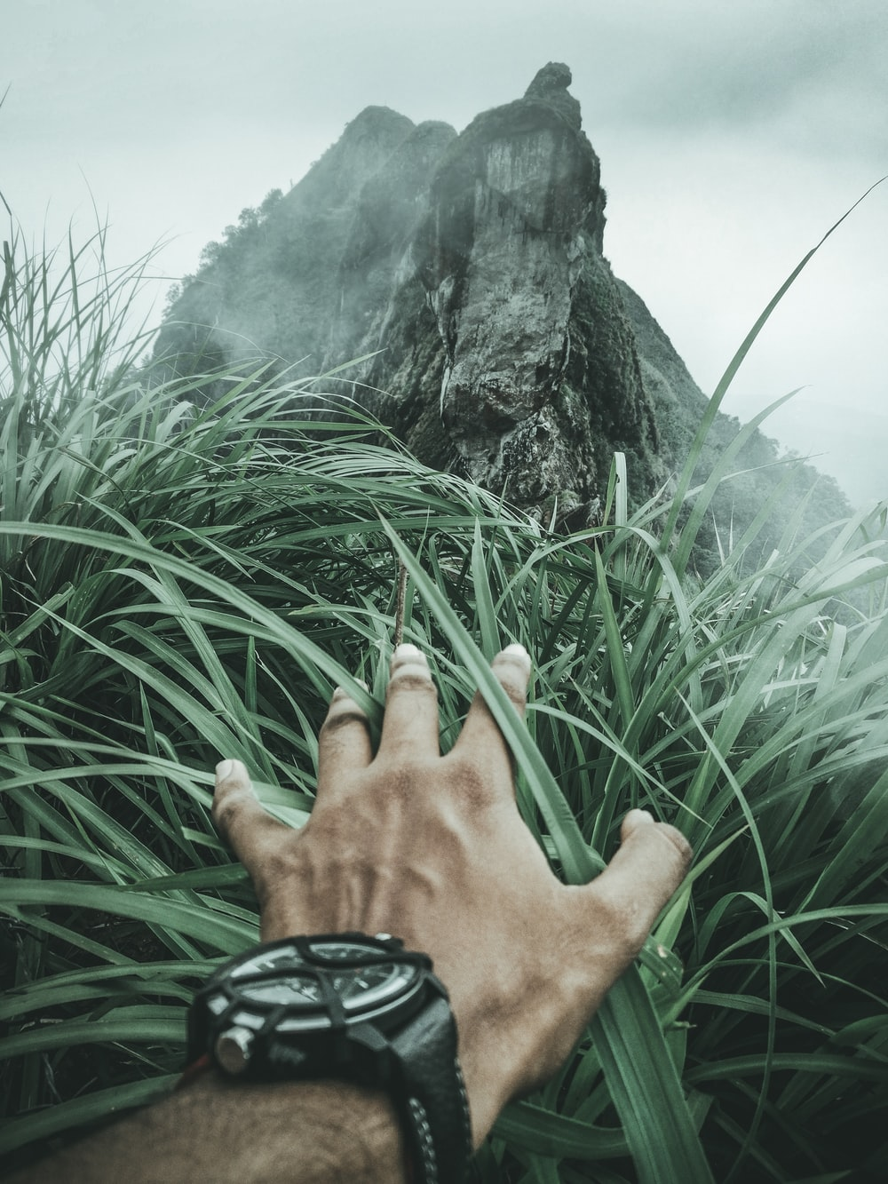 first person point of view of person clearing grass covering view showing mountain
