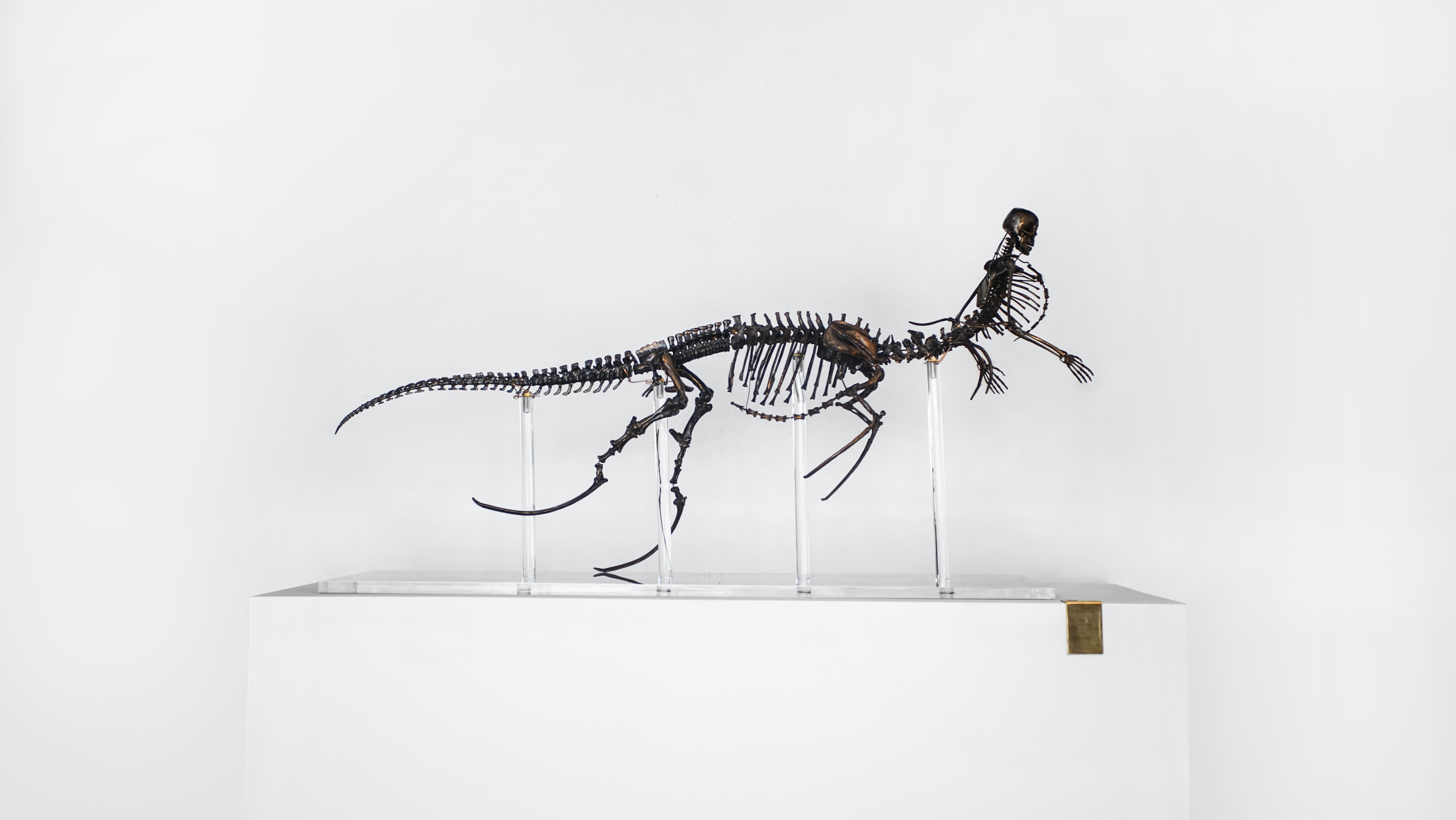 animal skeleton decor