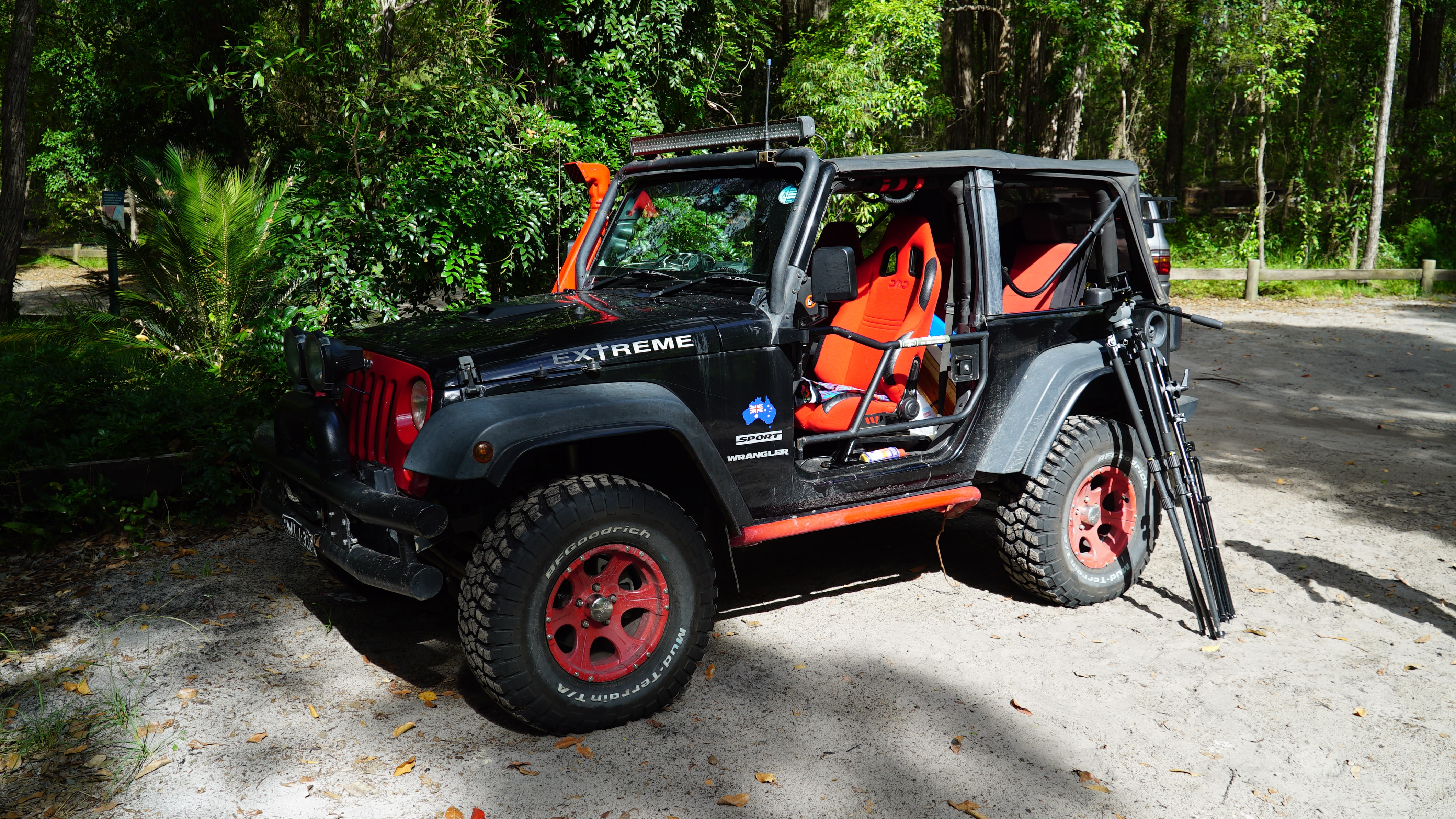 black Jeep Wrangler SUV in forest