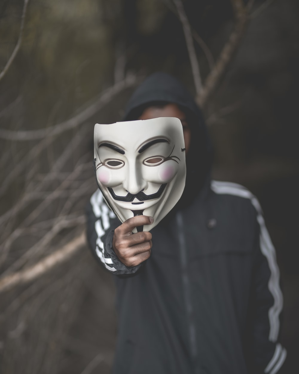 Vendetta Mask Pictures Download Free Images On Unsplash